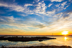 Delta de l'Ebre (tamarro) Tags: delta ebre tarragona