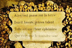 Paris Les Catacombs 13.9.2016 3841 (orangevolvobusdriver4u) Tags: 2016 archiv2016 france frankreich paris friedhof cemetary katakombe lescatacombs catacomb knochen bones skull schdel sign schild