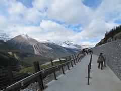 2016-100248 (bubbahop) Tags: 2016 canadatrip jasper national park alberta canada glacier skywalk sunwapta valley