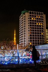 2016 illumination #6 (Yorkey&Rin) Tags:  2016 december em5 fridaynight illumination japan keyakizaka olympus olympusmzuikodigitaled1250f3563ez rin roppongihills tc023289 tokyo tokyotower winter woman