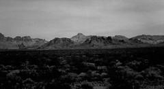 Desert Eye (Shot by Newman) Tags: desert brush plantlife bw nature mountains rockformations shotbynewman arizona southwestus weeds mojavedesert view 35mm ilforddelta4oo ilford daylight