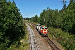 DSC08003 (Jani Järviluoto) Tags: kiuruvesi pai pai6331 dv12 dv122549 dv122630