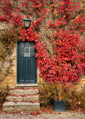 Door at Newstead Abbey (S.R.Murphy) Tags: door autumn landscape newsteadabbey october2016 sonynex6 nature autumncolours autumnleaves creeper inexplore flickrexplore28102016 red oldbuilding foliage plant tree architecture texture outdoor