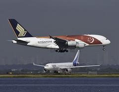 9V-SKJ (MAB757200) Tags: singaporeairlines a380841 9vskj sg50specialcolors aircraft airplane airlines airbus landing runway04l kjfk jetliner jfk