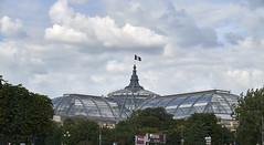 Grand Palais desde el Sena (CarlosJ.R) Tags: francia grandpalais pars sena