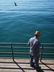 Staring at the Sea (Feldore) Tags: man straw hat sea ocean stare staring santa monica pier seagull california feldore mchugh em1 olympus 1240mm enigmatic standing