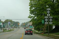 M20eRoad-M66nsSigns-RemusMI (formulanone) Tags: michigan sign road roadsign m20 20 m66 66