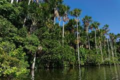 Jezioro Sandoval | Sandoval Lake