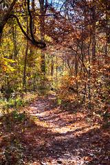 DSC08972-74_HDR (Capt Kodak) Tags: autumn chattahoocheerivernationalrecreationarea fall hdrefexpro2 madefrom3images medlockbridgepark nationalparkservice nikcollectionbygoogle niksoftware photomerge