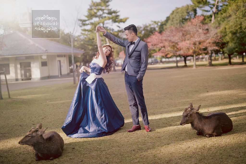 海外婚紗,奈良公園,婚紗攝影,日本婚紗,東大寺,自助婚紗,日本拍婚紗推薦,奈良婚紗,京都奈良,海外攝影