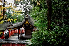 Fushimi Inari Shrine. Inari Kitsune Kyoto.  Glenn E Waters. Japan 2016. (Glenn Waters in Japan.) Tags: kyoto fushimiinarishrine jinja shrine temple inari glennwaters japan