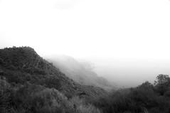 Coast life III. (pepesanmartn) Tags: coast mountain sea nature outdoor landscape trees vegetation water mediterranean hills cliff horizon fog foggy cloudy morning hiking white blackandwhite monochrome