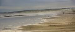 A walk on the beach (ChrisKirbyCapturePhotography) Tags: southaustralia goolwa goolwabeach sea seaandsky sand sandandsky couple walking walkingonthebeach