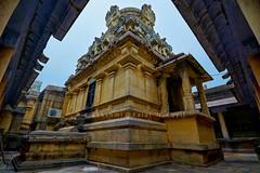 """Abhiramesvarar Temple- Tiruvamattur - Villupuram- Tamilnadu . (Kalai """"N"""" Koyil) Tags: nikon d 5200 kalai n koyil 2016 tokina 1116mm 18140mm tiruvamattur abhiramesvarar perumanadigal thiruvamathur villupuram gingee tamilnadu southindiantemple architecture parantakai sundarachola rajarajai gomadhupuram nadunadu21st shiva"""