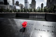 USA TRIP - DAYS 25-28 - GROUND ZERO ROSE (andybseesthings) Tags: groundzero 911 memorial pools new york city nyc newyork moody rose travel travelphotography travelblog nikon sigma