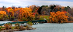 henley bridge (Rex Montalban Photography) Tags: rexmontalbanphotography stcatharines portdalhousie henleybridge autumn fall