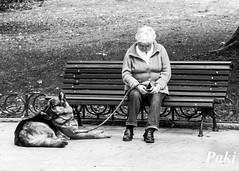 Compaeros (Paky paky) Tags: madrid parque espaa dog garden spain classmates banco perro oldwoman anciana
