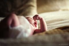 Whisper (Sonya Adcock Photography) Tags: baby bed soft moody newborn snuggly windowlight