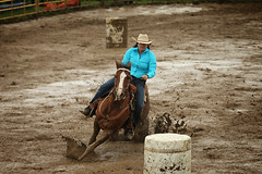 CalgaryPoliceRodeo2015-BarrelRacing-437 (calgarypolicerodeophotos) Tags: horse calgary race bareback sheep barrel police bull racing poker rodeo calf bullriding chute mutton saddle bronc steerwrestling barrelracing saddlebronc cpra chutedogging