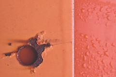 oranges (L. Paul) Tags: orange abstract droplets rust hole mountpleasant iowa minimalism tones waterdroplets orangetones henrycounty rustyhole