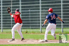 "BBL15 PD Cologne Cardinals vs. Hannover Regents 22.08.2015 069.jpg • <a style=""font-size:0.8em;"" href=""http://www.flickr.com/photos/64442770@N03/20783122996/"" target=""_blank"">View on Flickr</a>"