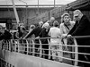 The Monet Passengers (1mpl) Tags: bw monochrome germany danuberiver travelphotography niksilverefexpro olympusomdem1
