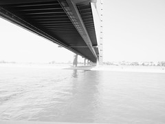 _8134371-Modifica-1 (FloBue) Tags: city bridge summer blackandwhite architecture river estate sommer fiume ponte stadt architektur highkey reno schwarzweiss fluss rhine rhein architettura duesseldorf biancoenero città bruecke 2015