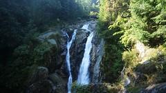 Cascada Lolaia (Sorin Sfrlogea) Tags: retezat montaniard