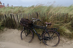 Beach-Shuttle (-BigM-) Tags: sea holiday holland beach netherlands bike bicycle strand photography meer fotografie south urlaub north nl nordsee fahrrad zuid niederlande süd bigm nordwijk