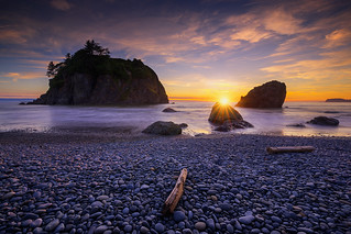 Ruby Beach Dreaming