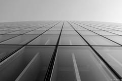 Paris Grande bibliothèque François Mitterrand (pi3rreo) Tags: city sky urban paris architecture noiretblanc perspective ciel bibliothèque ville immeuble verre urbain hauteur