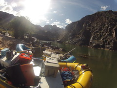 grand canyon2015 046