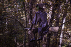 Witching Hour (janedsh) Tags: county autumn fall by photography fly photo woods jane witch wayne indiana arboretum richmond hayes broomstick holman waynecounty hayesarboretum photobyjane holmanphotoscom holmanphotography