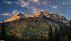 Sun kissed (Bill Bowman) Tags: autumn colorado fallcolors rockymountains elkrange hagermanpeak leadkingbasin snomassmountain