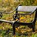Autumn in Copenhagen - Copenhagen Bench