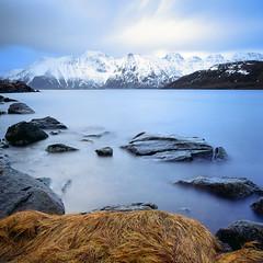 Rolvsfjorden - Velvia 50 (magnus.joensson) Tags: norway norwegian winter lofoten scandinavia hasselblad 500cm zeiss distagon 50mm fle cf e6 velvia 50 120 fuji
