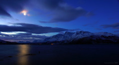 a night when suddenly I want to howl at the moon (dog) ;) (lunaryuna) Tags: winter moon seascape mountains norway fjord lunaryuna moondog northernnorway svensby ullsfjorden tromsfylke arcticregion arcticnight lyngenalps winterabovethearcticcircle eternalbluehour