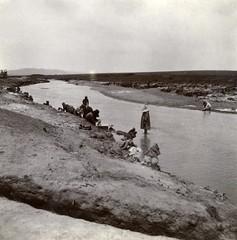 Near Pietersburg Camp, c.1901.