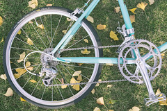 DSCF8977 (Tubadan) Tags: bike bicycle 50mm cycling bicicleta riding fujifilm 銀杏 日落 自行车 fahrrad fietsen vélo bianchi celeste 自転車 單車 骑行 户外 秋葉 велосипед 車輪 دراجة duth هوائية 小径車