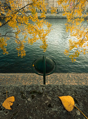 Yellow Leaf [Flickr Explore] (A-lain W-allior A-rtworks) Tags: autumn trees winter red summer orange paris france cold fall yellow seine automne river leaf nikon arbres end nikkor feuilles fleuve
