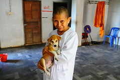 ,, The Nurse Nun ,, (Jon in Thailand) Tags: street door blue red woman smile puppy bucket eyes chair nikon purple robe streetphotography nun kind jungle kindness nikkor hiddenmessage d300 orande thaismile 175528 abandonedabusedstreetdogs littledoglaughedstories thedogpalace nursenun
