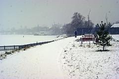 Snowfall (arthur_streltsov) Tags: trophyofexcellence