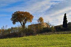 Val D'Orcia im Winter (Wolfgang.Grilz) Tags: unesco tuscany siena montepulciano valdorcia toskana cretesenese