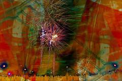 Forest Rec Fireworks (Nifty_Shoes) Tags: nottingham fireworks guyfawkes plot bonfirenight gunpowder treason 5november forestrec goosefairsite