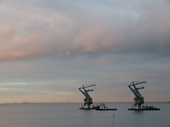 Terneuzen 29 december 2015 Margriet Heinen (Omroep Zeeland) Tags: december 29 margriet 2015 terneuzen heinen