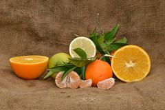 JSC_7503 (Kostas Kalomiris) Tags: orange fruits lemon juice mandarin citrus citrusfruit citrustrees