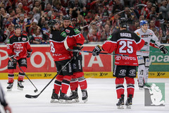 """DEL16 Kölner Haie vs. Augsburg Panthers 22.12.2015 113.jpg • <a style=""""font-size:0.8em;"""" href=""""http://www.flickr.com/photos/64442770@N03/23899998136/"""" target=""""_blank"""">View on Flickr</a>"""