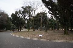 DSC02833.jpg (randy@katzenpost.de) Tags: winter japan yoyogikoen shibuyaku tkyto japanurlaub20152016