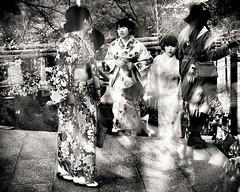 Vague à l'âme (www.danbouteiller.com) Tags: japan japon japonia kyoto 京都市 京都 清水寺 日本 着物 park parc femme woman women femmes girl girls filles kimono asia asian asiatique japanese japonaise japonaises scene mono monochrome monochromatic black white noir blanc nb bw noiretblanc noirblanc blackandwhite blackwhite blacknwhite canon canon5d eos 5dmk2 5d 50mm 50mm14 5d2 5dm2