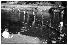 The Stepping Stones (Wilco1954) Tags: riverwharf steppingstones wharfedale boltonabbey westriding yorkshire england ilkeymoor